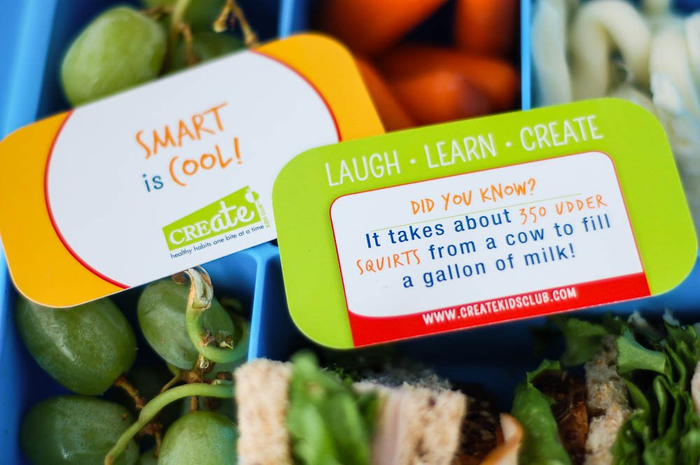 Lunch Box Note Cards For Kids School Lunch - 48 Card Set Positive Messages, Jokes, Facts, Riddles for kids, fun science facts for your child's school lunch or backpack - Lunch Bites
