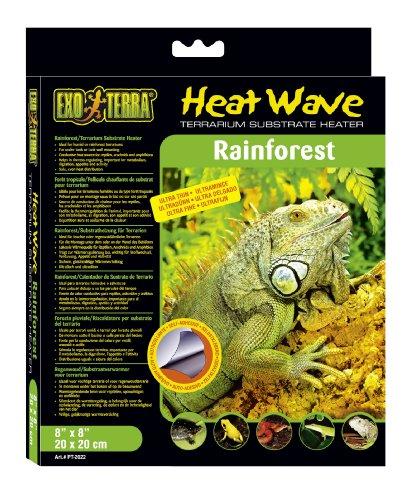 Exo Terra Heatwave Rainforest, 4-Watt/110-Volt, 8 by 8-Inch by Exo Terra
