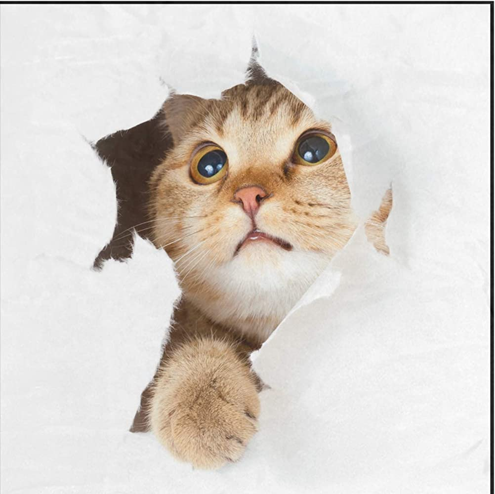 Ahomy pañuelos cuadrados para gato, fondo blanco, para mujer ...