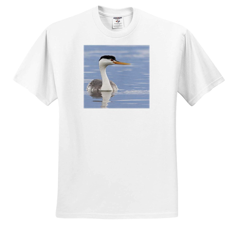 3dRose Danita Delimont Adult T-Shirt XL ts/_313988 Birds Clarks Grebe