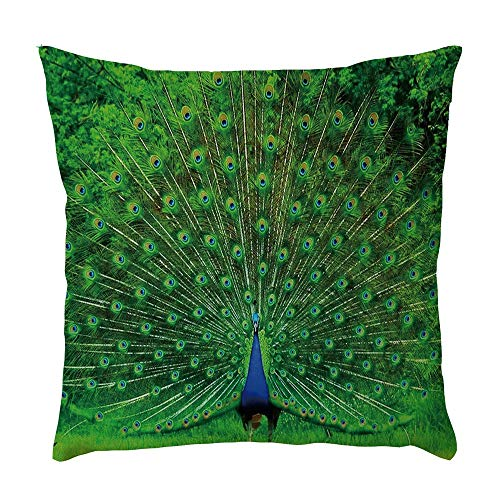 GOVOW Car Decor for Boys Room Peacock Pattern Pillowcase Pillow Case Cushion Cover Sofa Home Decor