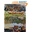 Pigeon Spring (A Matt Steel™ Series Book 1)
