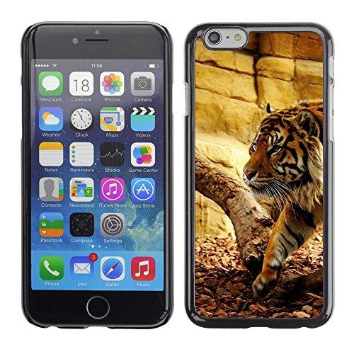 GooooStore/Housse Etui Cas Coque - Tiger Beige Wild Cat Big Animal Nature - Apple iPhone 6
