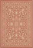 Unique Loom Outdoor Collection Traditional Floral Border Indoor and Outdoor Transitional Terracotta Area Rug (7′ x 10′) Review