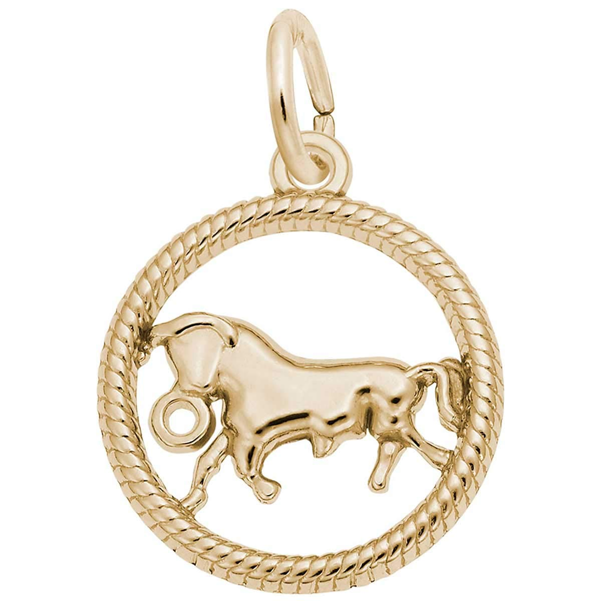 10K Yellow Gold Rembrandt Charms Taurus Charm