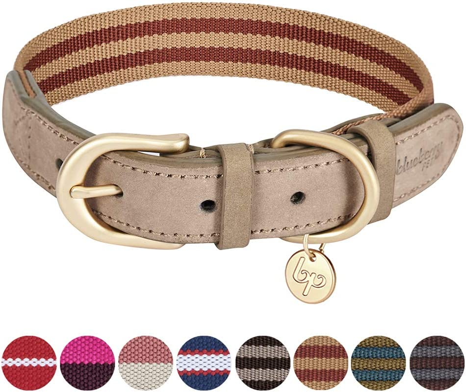 Neck 15-18 Blueberry Pet Polyester Fabric Webbing and Soft Genuine Leather Dog Collar in Red and White Adjustable Collars for Dogs Medium