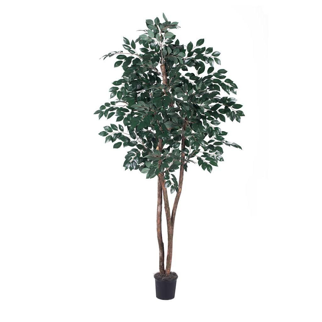 Vickerman THE0765-07 Green Sakaki Everyday Tree