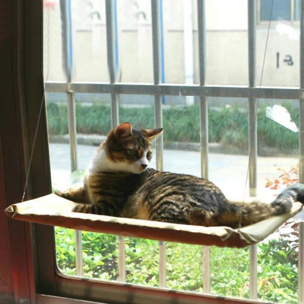 HuhuswwBin Hamaca para Gatos, para Mascotas, Gatos, Ventanas, Perchas, Asientos, Cuna, Ventosa, no Requiere Herramientas, Hamaca para Ratones/hámsteres: ...