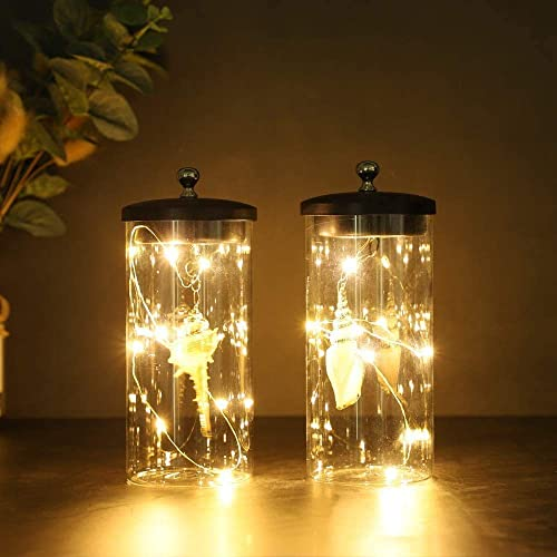 JHY DESIGN Set of 2 Sea Shell Pendant Decorative Lamp Battery Powered Lights 7 Tall Cordless Lamp Light with Fairy Lights for Living Room Bedroom Kitchen Wedding Xmas