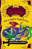 How to Train Your Dragon: How to Fight a Dragons Fury