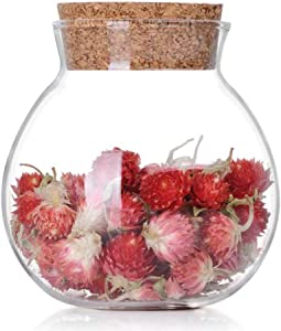 1PCS Transparent Empty Round Glass Sealed Tank With Cork Stopper Reusable Large Capacity Bottles Pot Vial Storage Holder Containers For Cosmetics Food Nut Snack Tea Dried flower and More (500ML/17OZ)