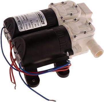 2 Jambes Backbayia Pompe /à Eau De CC 12V Pompe /à Diaphragme Miniature Pulv/érisateur Lavage de Voiture Nettoyage