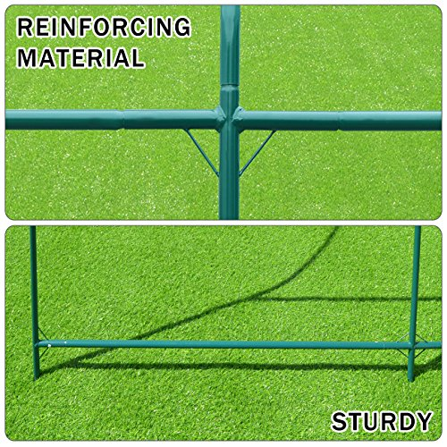 Strong Camel New Hot Green House 12'X7'X7' Larger Walk in Outdoor Plant Gardening Greenhouse by Strong Camel (Image #3)