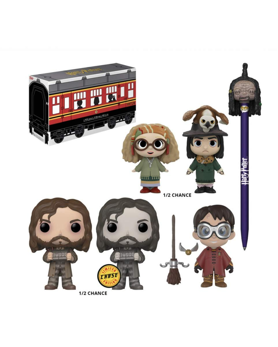 Harry Potter Funko Exclusivo Mystery Box: Amazon.es ...