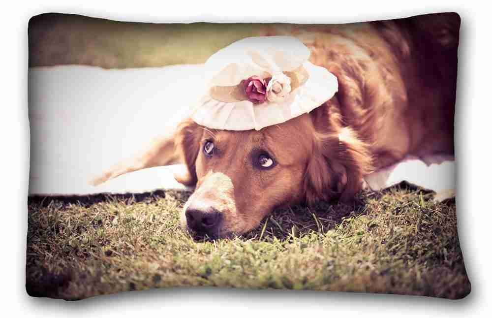 Amazon.com: Soft Pillow Case Cover (Animals dog hats flower grass sunlight)  Rectangle Pillowcase 20x30 inches (one side) suitable for King-bed: Home & ...