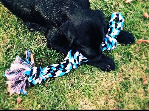 Mary & Kate Pets XL Dog Rope Toy for Aggressive Chewers - Original Extra Sturdy - Large Dogs and Teething Puppies - Heavy Duty - Dental Floss - Classic Tug - Nearly Indestructible (Extra Large, Blue)