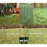 colourful jessejump dog agility training starter kit. (due to amazons new postage policy we can only post this item to mainland uk (England, Wales, and Scotland only))