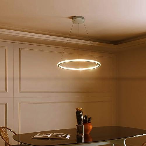 Toupus Modern Pendant Lighting 1 Ring 60cm LED Chandelier Acrylic