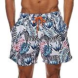 SilkWorld Men's Swim Trunks Printed Surfing Beach Shorts Mesh Lining(US M Size-Asian Tag XL, Waist 32.5'' - 34'', Zebra)