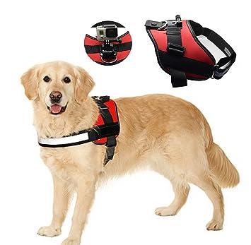 Arnés de pecho que hayan quedado LCtech pbtener de perro correa para el hombro para GoPro