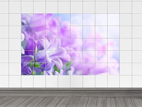 https://images-na.ssl-images-amazon.com/images/I/61iJxLsaxfL._SX466_.jpg