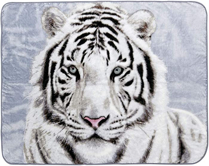 Shavel Home Products Luxury Hi Pile Oversized Throw, 60x80, White Tiger
