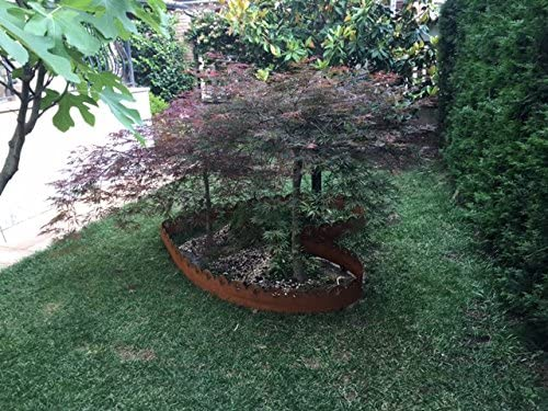 Bordura de acero Corten Modelo lirio: Amazon.es: Jardín