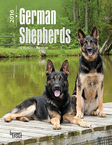 German Shepherds - 2016 Engagement Calendar Planner 7 x 8in