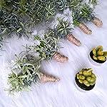 Supla-2-Pcs-Artificial-Rosemary-Garlands-Hanging-Rosemary-Plants-Faux-Rosemary-Greenery-Garlands-Table-Runner-Garlands-in-Green-118-L-Wedding-Arch-Swag-Backdrop-Mantel-Doorway-Indoor-Outdoor-Decor