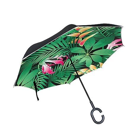 a554974ce4f1f Amazon.com: IMOBABY Tropical Hawaiian Plumeria and Hibiscus Flowers ...