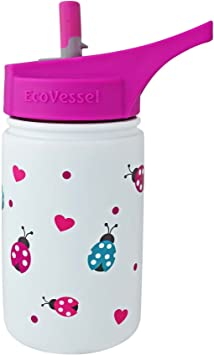 Amazon.com: Botella para agua EcoVessel para niños ...