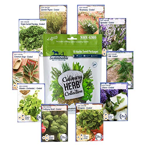10 Variety Culinary Herb Collection and 96 Page Growing Guide - Non GMO Heirloom Basil, Thyme, Rosemary, Oregano, Parsley, Lavender, Sage, Cilantro, Chives, Dill (Cilantro Seeds Organic)