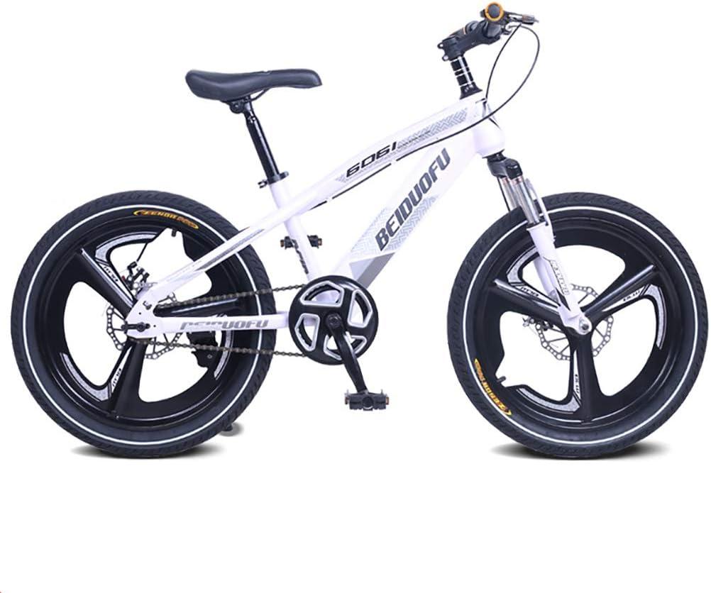 YAOXI Bicicleta De Montaña con Suspensión De Horquilla, Individual Velocidad Bicicleta Sistema De Doble Disco De Freno Bicicleta para Niños, Niño Chica Bicicleta De Montaña,Gris,18Inch
