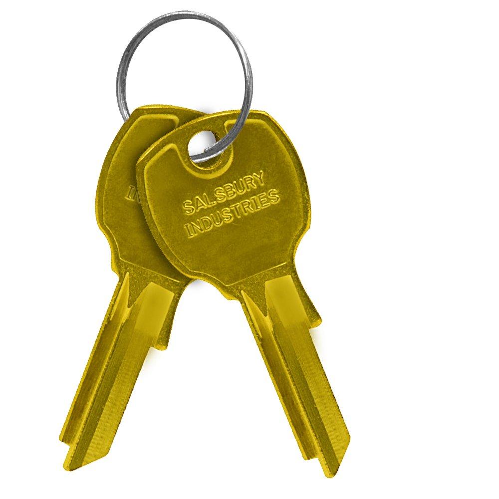 Salsbury Industries 3699 Key Blanks for Standard Locks of 4B+ Horizontal Mailboxes (Box of 50)
