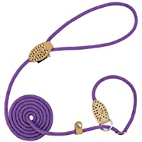 Grand Line Reflective Climbing Rope Slip Lead Pets Leash for Small, Medium, Large and Extra Heavy Dogs and Cats - 5 Ft…