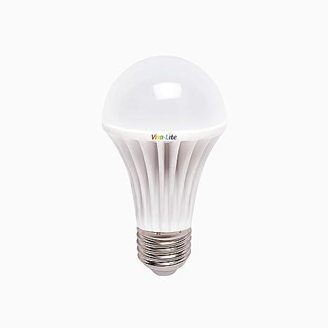 Viva-Lite® - Bombilla de luz led diurna (espectro total, casquillo E27