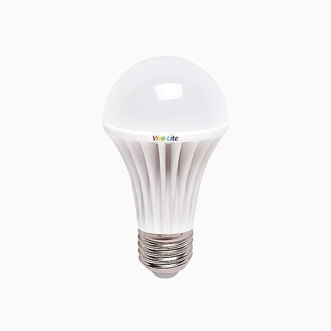 Viva-Lite® - Bombilla de luz led diurna (espectro total, casquillo E27): Amazon.es: Hogar