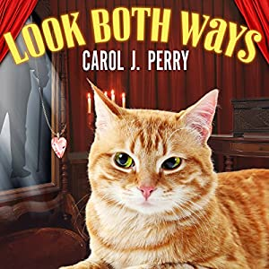 Look Both Ways Audiobook
