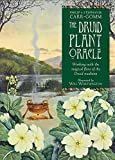 img - for The Druid Plant Oracle: Working with the Magical Flora of the Druid Tradition book / textbook / text book