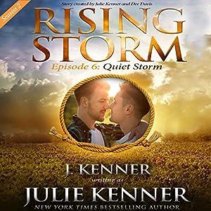 Quiet Storm Audiobook