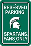 Fremont Die NCAA Michigan State Spartans 12-by-18