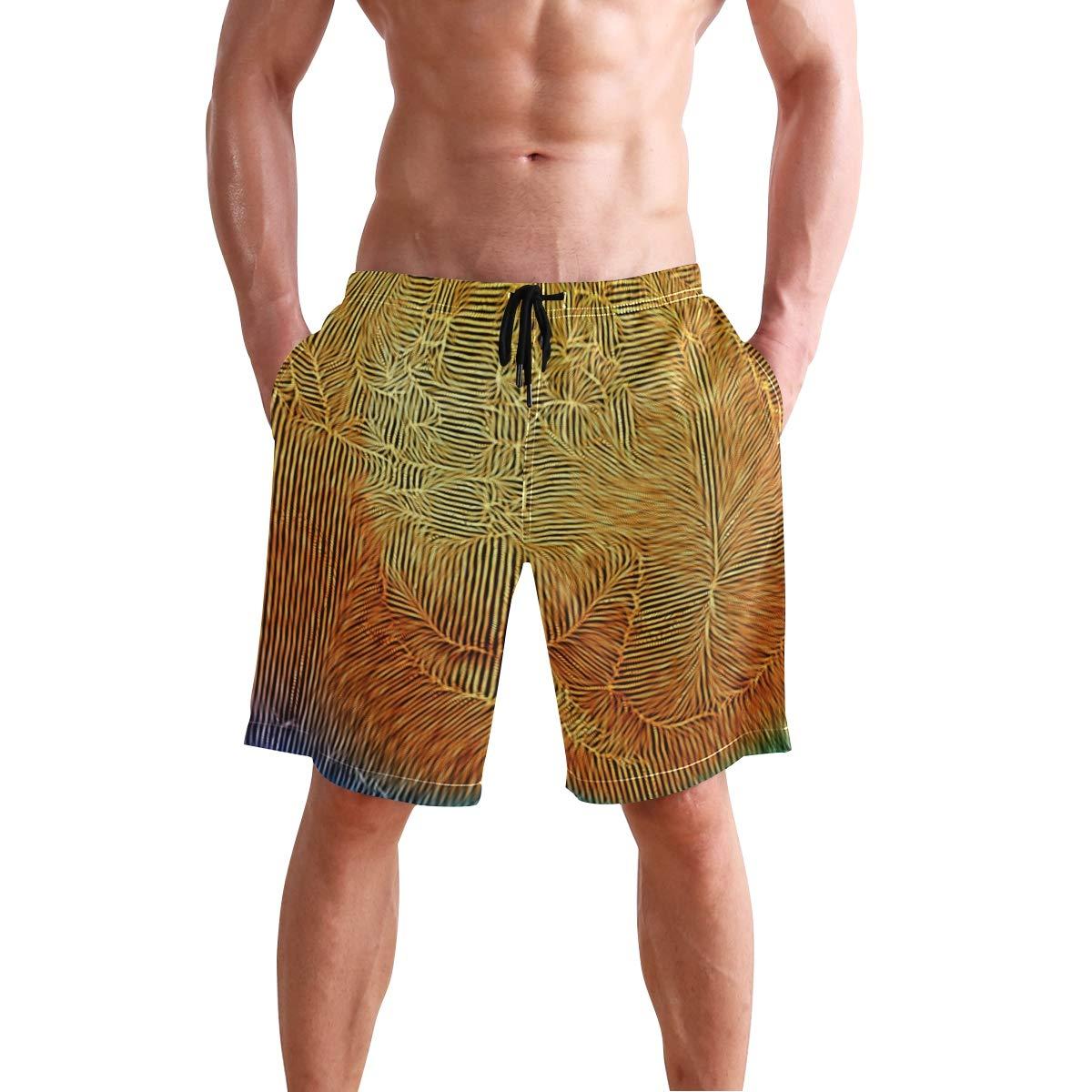 DJROW Paisley Pattern Mens Quick Dry Beach Shorts Swim Trunk Beachwear with Pockets