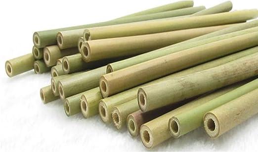 Pajitas de bambú natural, 12 unidades, cepillo de limpieza ...