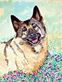 Caroline's Treasures 7231CHF Norwegian Elkhound Flag Canvas, Large, Multicolor Review
