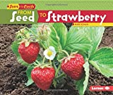 img - for From Seed to Strawberry (Start to Finish, Second (Paperback)) book / textbook / text book