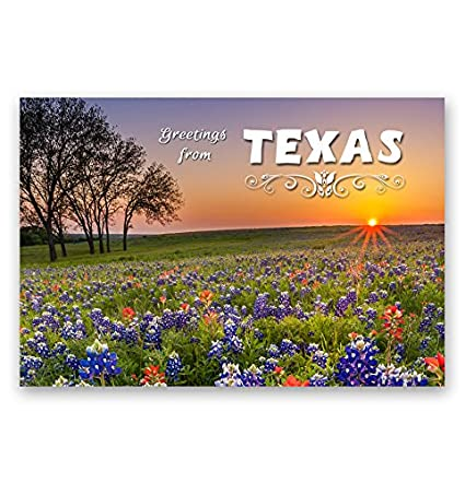 Amazon greetings from texas postcard set of 20 identical greetings from texas postcard set of 20 identical postcards tx post cards made in m4hsunfo
