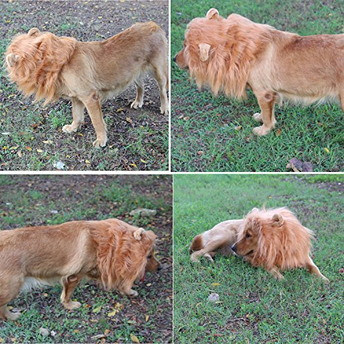 Lion Mane Dog Costumes Dog Wig Lion Hair Cosplay With Ears and Tail For Mediun And Large Pets Golden Retriever