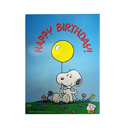 SmartPractice Dentist QuotHappy Birthdayquot Funny Humor Peanuts Snoopy Greeting Card