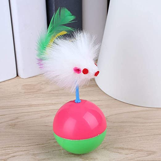Amazon.com : Best Quality pet cat Kitten Funny mice Mouse Tumbler Ball Plastic Teaser Game Play Toy : Pet Supplies