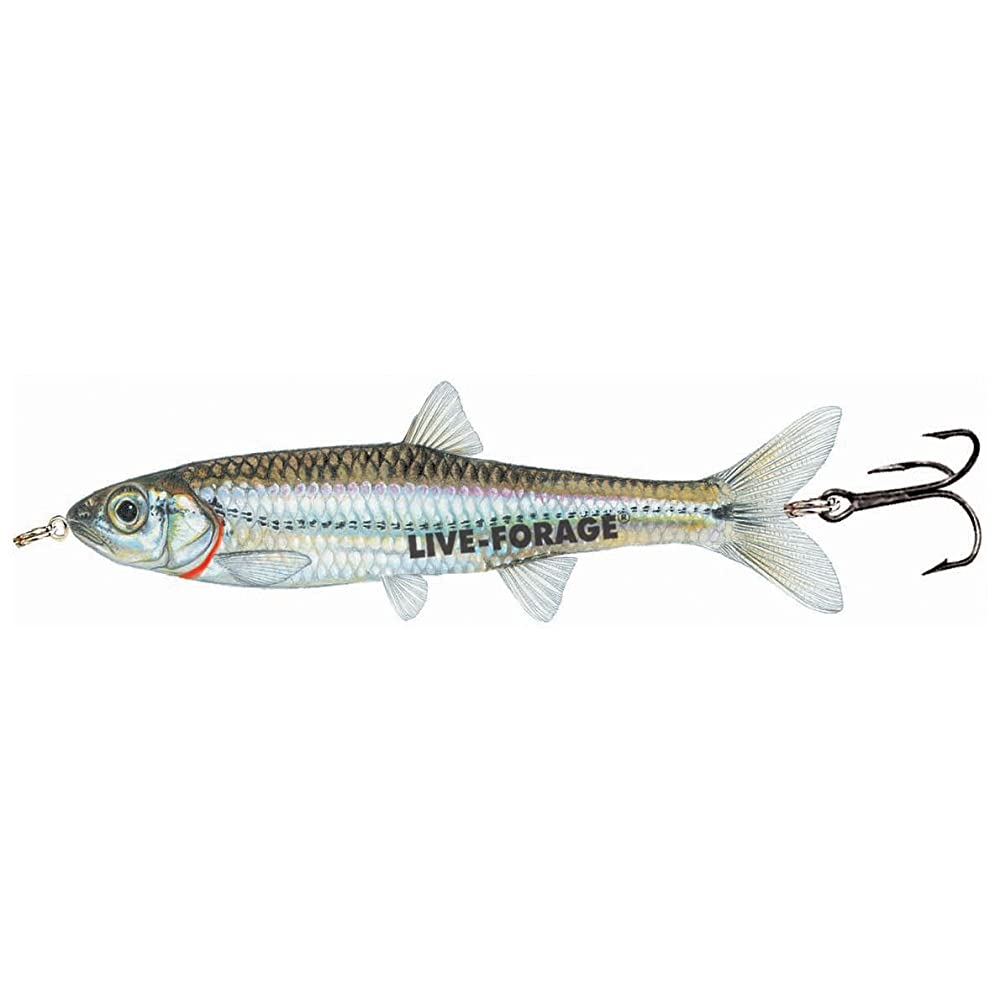 NORTHLAND TACKLE Fish-Fry Minnow Spoon Jig